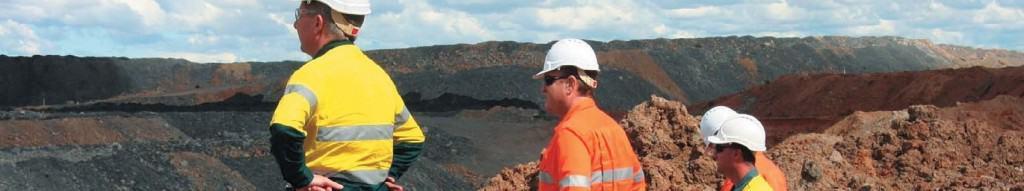 MICROMINE Annual Licence Membership - Mine Site